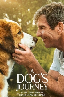 A Dogs Journey DVD